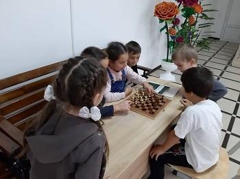 Кружок «Шашки, Шахматы»